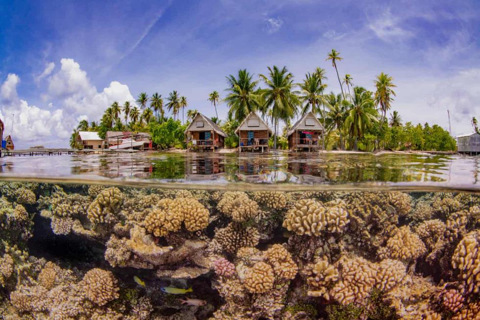 Mê mẩn ảnh đẹp đại dương năm 2019 - Ảnh 8.