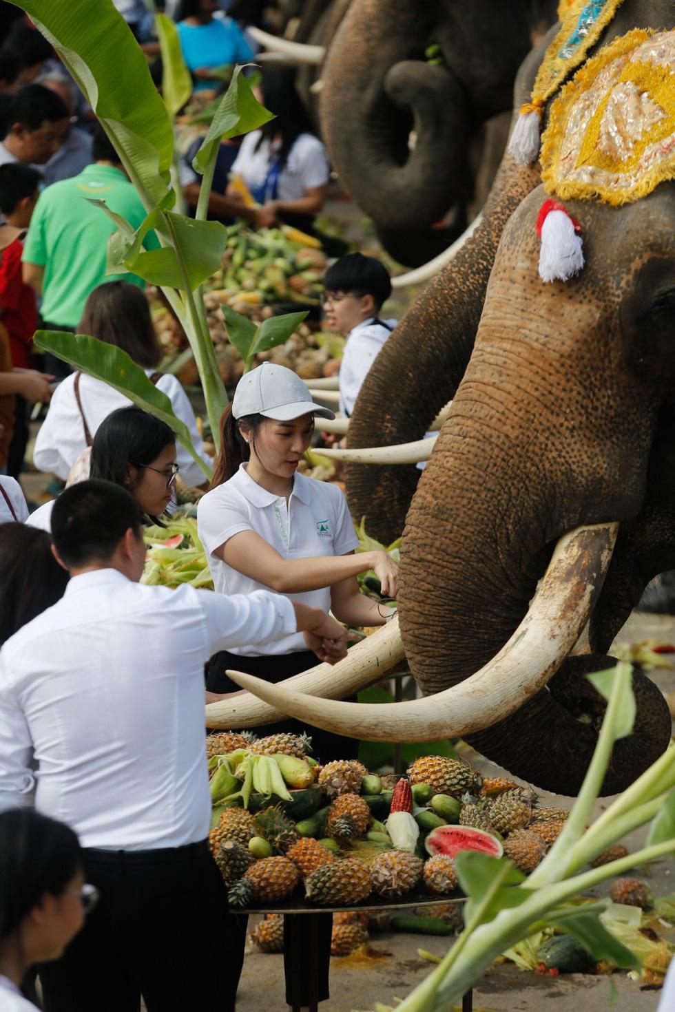 Ngày voi quốc gia Thái Lan: tắm, chơi và ăn rau quả - Ảnh 9.