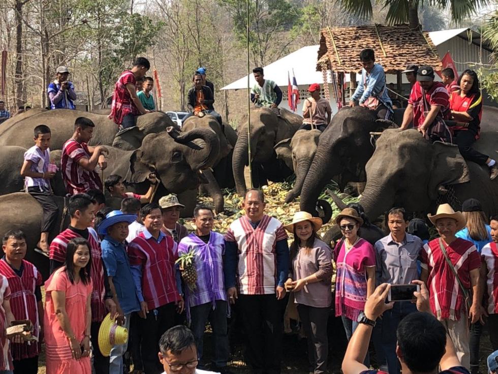 Ngày voi quốc gia Thái Lan: tắm, chơi và ăn rau quả - Ảnh 14.