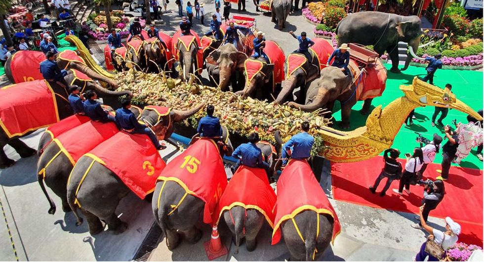 Ngày voi quốc gia Thái Lan: tắm, chơi và ăn rau quả - Ảnh 1.