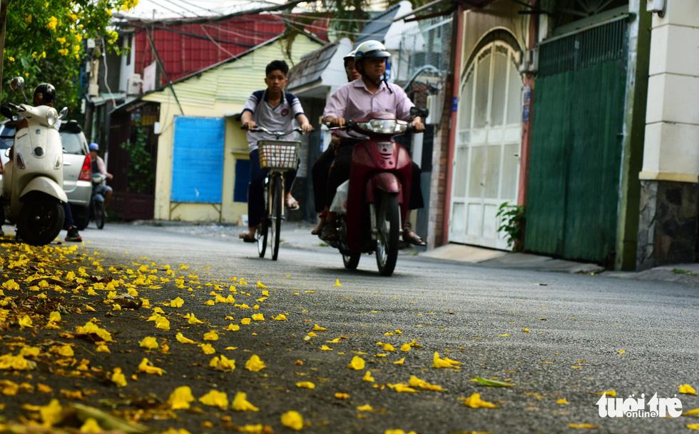 Hoa huỳnh liên rợp bóng đường ray xe lửa chiều Sài Gòn - Ảnh 10.