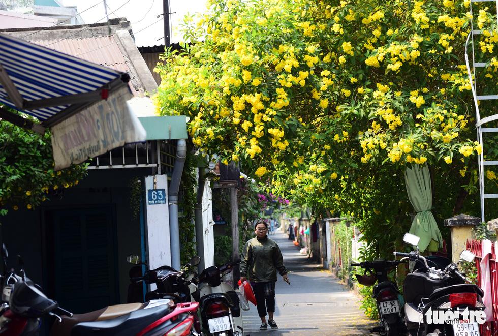Hoa huỳnh liên rợp bóng đường ray xe lửa chiều Sài Gòn - Ảnh 3.