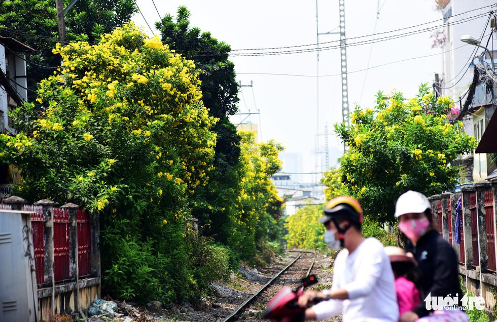 Hoa huỳnh liên rợp bóng đường ray xe lửa chiều Sài Gòn - Ảnh 4.