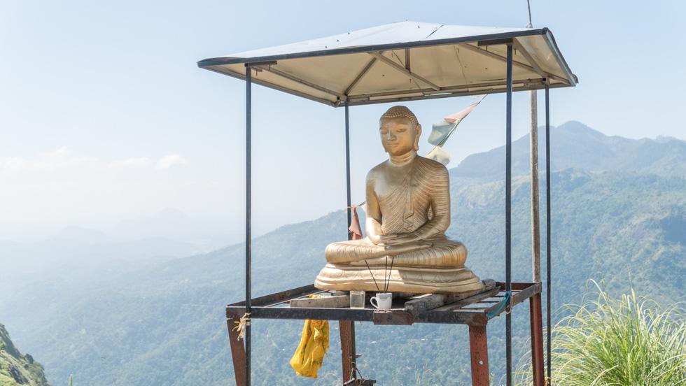 Băng qua những đồi chè xanh mướt ở Sri Lanka - Ảnh 2.