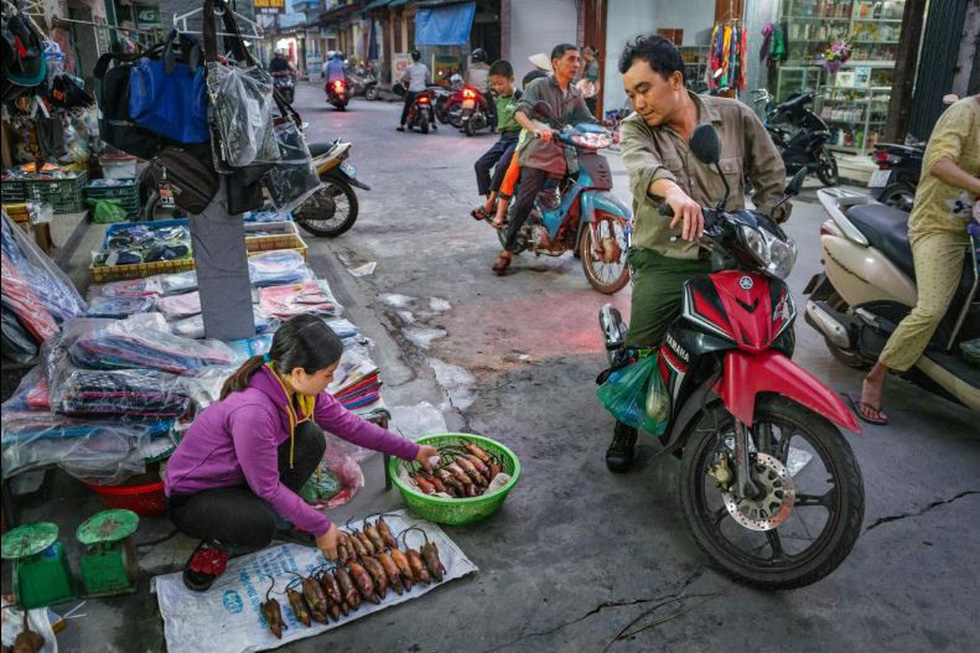 Đặc sản thịt chuột của Việt Nam lên tạp chí National Geographic - Ảnh 7.