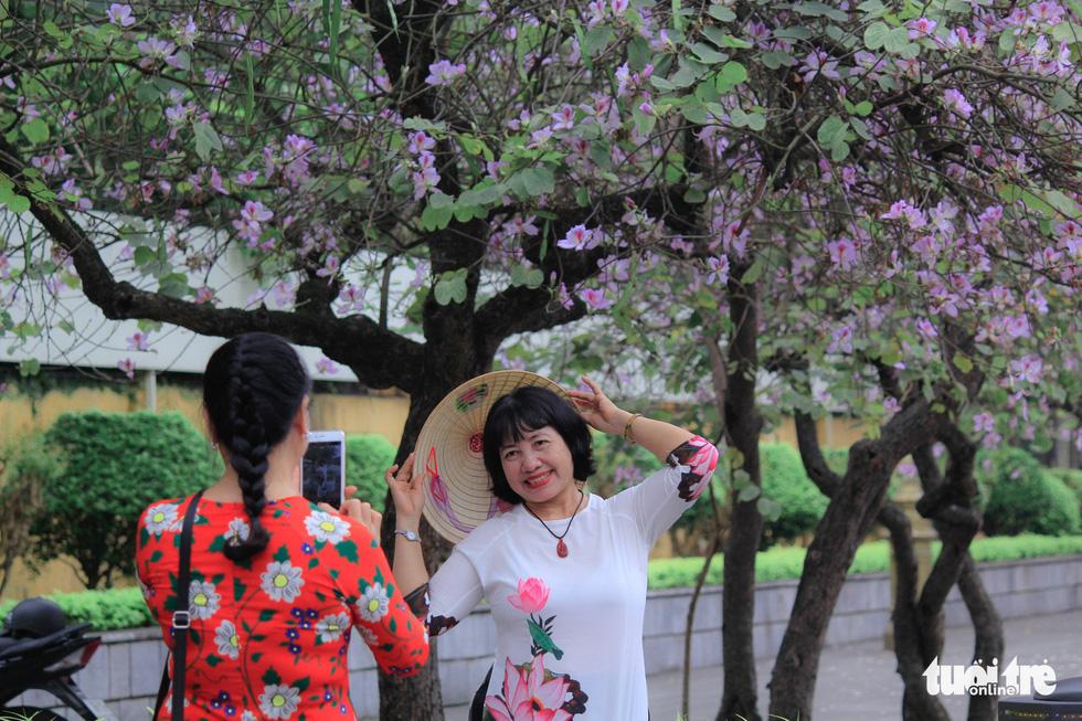 Tháng 3 hoa ban tràn về Hà Nội - Ảnh 11.