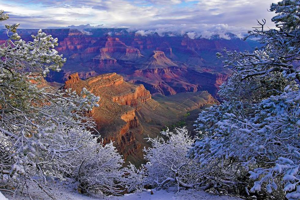 Kỳ quan Grand Canyon tráng lệ mùa tuyết rơi - Ảnh 13.