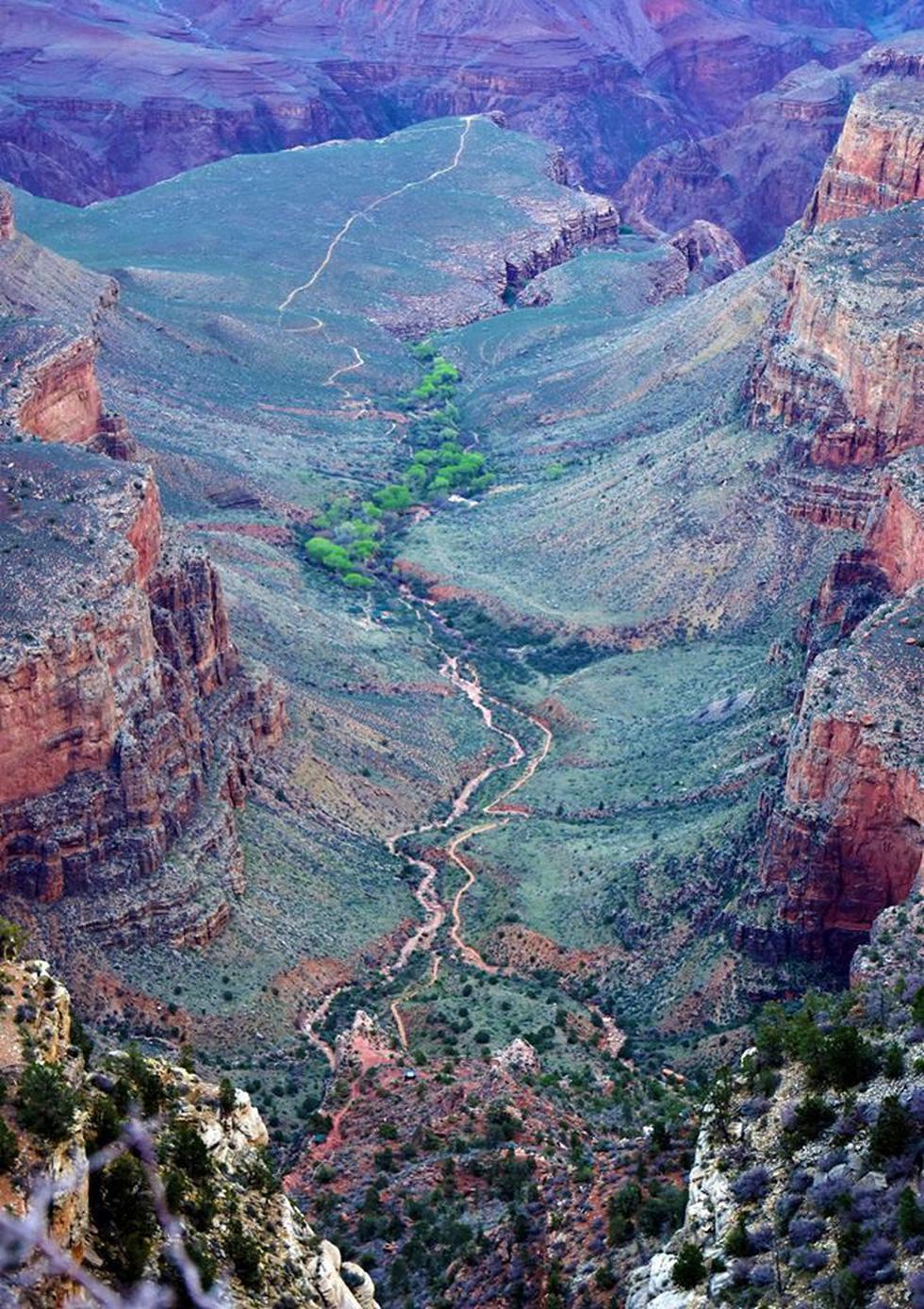 Kỳ quan Grand Canyon tráng lệ mùa tuyết rơi - Ảnh 3.