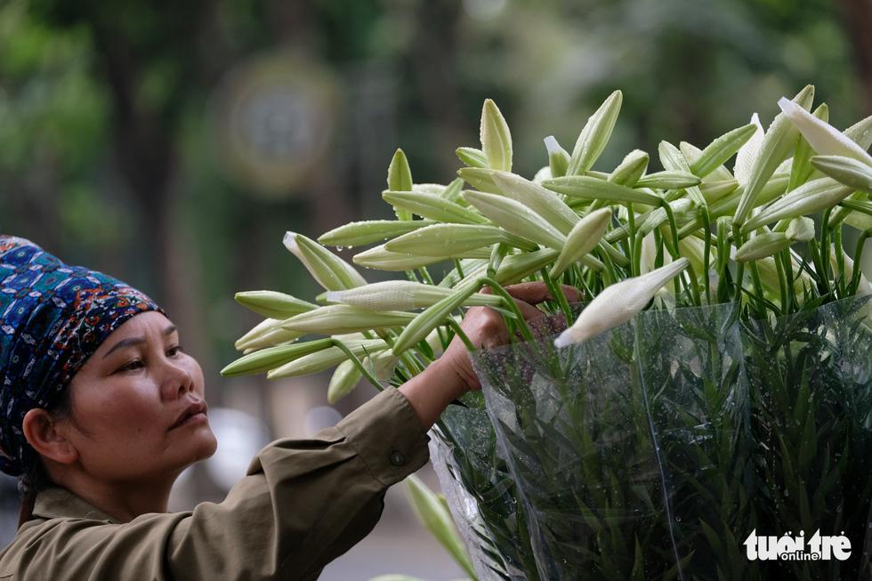 Hoa loa kèn gọi tháng 4 khắp phố phường Hà Nội - Ảnh 4.