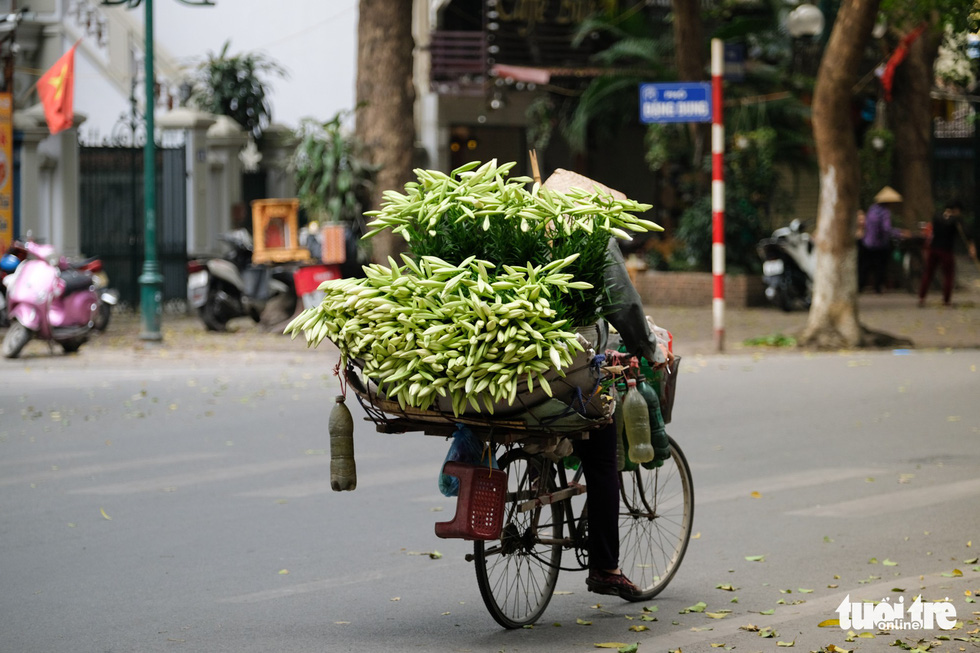 Hoa loa kèn gọi tháng 4 khắp phố phường Hà Nội - Ảnh 12.