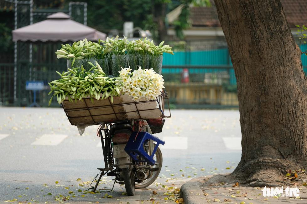 Hoa loa kèn gọi tháng 4 khắp phố phường Hà Nội - Ảnh 11.