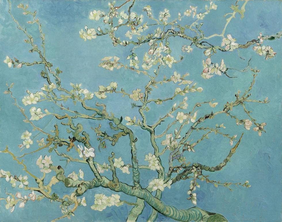 Lần đầu tiên xem tranh Van Gogh phiên bản số ở Việt Nam  - Ảnh 7.