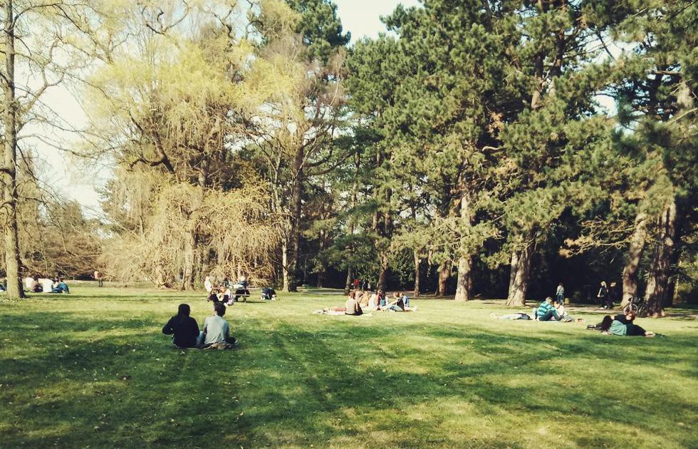 Hẹn hò, picnic, phơi nắng và cả... hôn nhau ở nghĩa trang - Ảnh 1.
