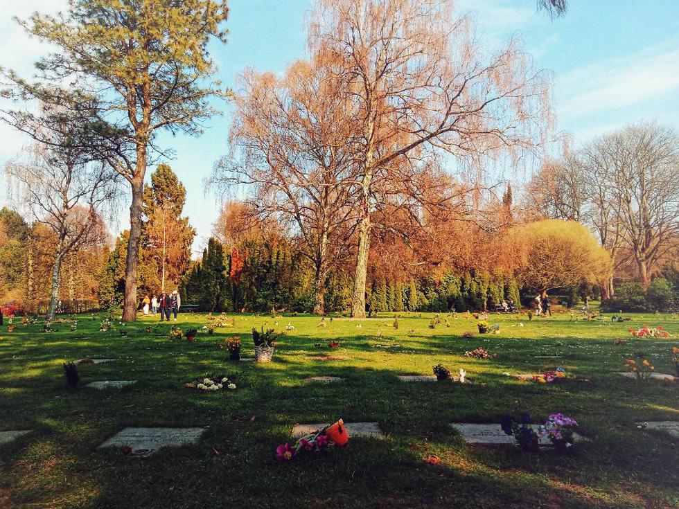 Hẹn hò, picnic, phơi nắng và cả... hôn nhau ở nghĩa trang - Ảnh 4.