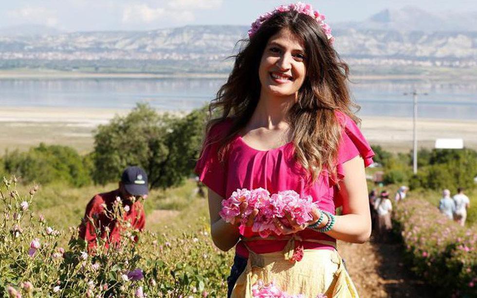 Thành phố thơm nức hương hoa hồng miền Địa Trung Hải
