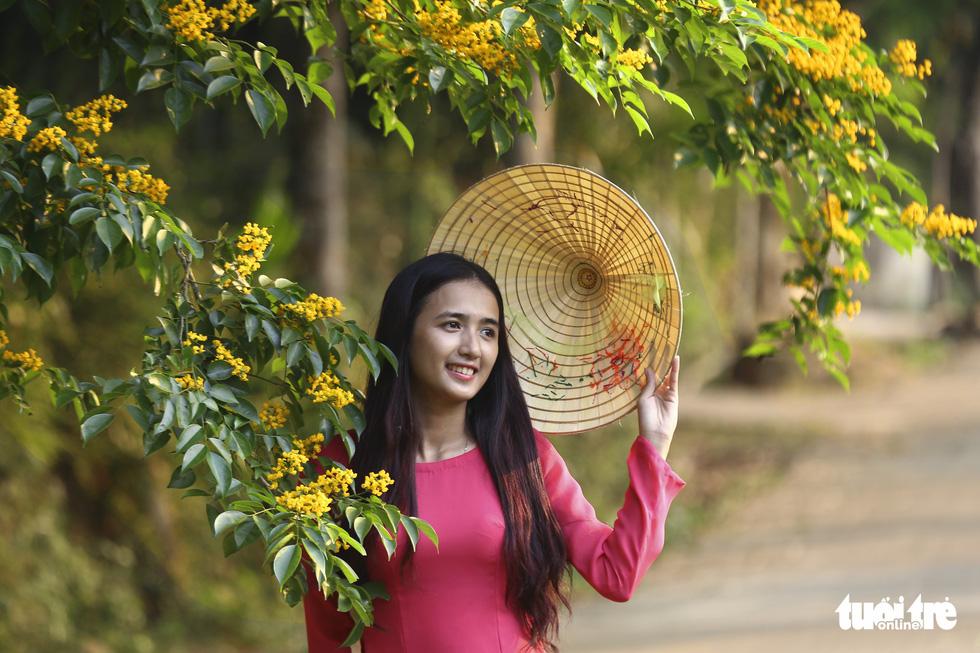 Mùa hoa sưa vàng đẹp như tranh ở xứ Quảng - Ảnh 1.