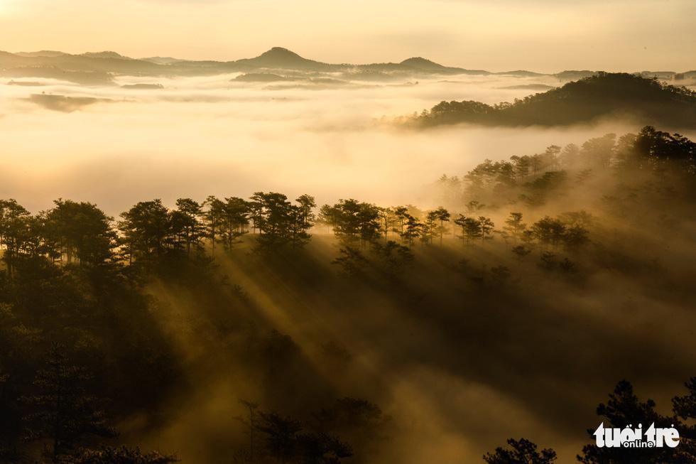 Đà Lạt đẹp kỳ ảo mùa sông mây - Ảnh 3.