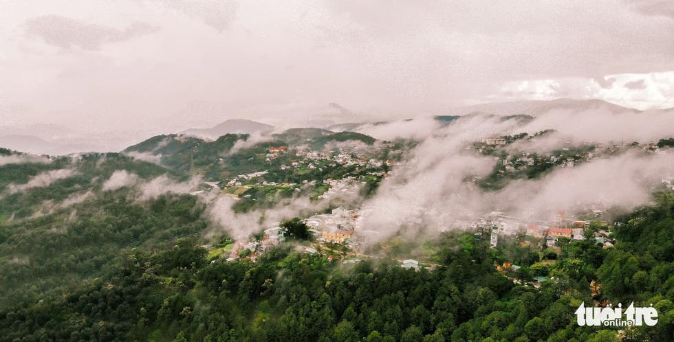 Đà Lạt đẹp kỳ ảo mùa sông mây - Ảnh 8.