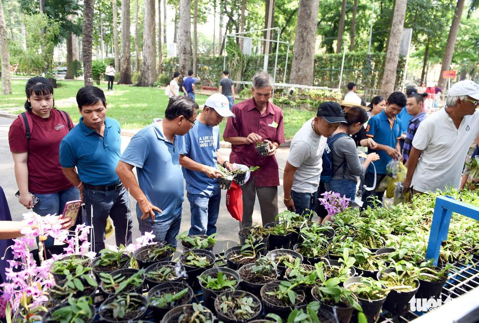 Check-in công viên Tao Đàn ngắm hoa lan trong Sắc màu nhiệt đới - Ảnh 3.