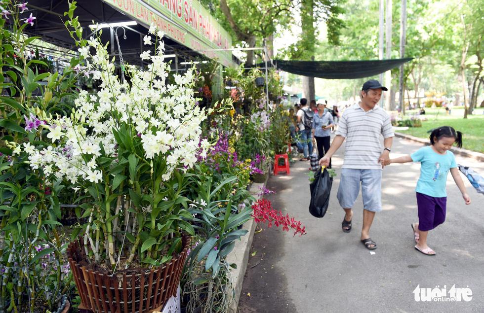 Check-in công viên Tao Đàn ngắm hoa lan trong Sắc màu nhiệt đới - Ảnh 7.