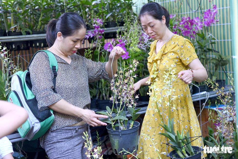 Check-in công viên Tao Đàn ngắm hoa lan trong Sắc màu nhiệt đới - Ảnh 8.