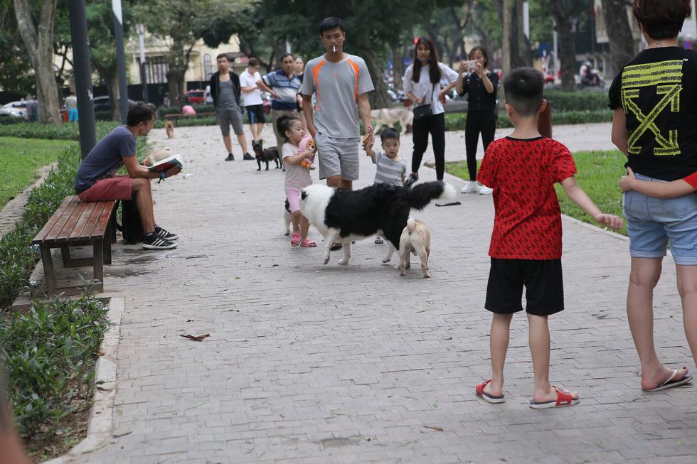 Chó không đeo rọ mõm lang thang khắp phố phường Hà Nội - Ảnh 9.