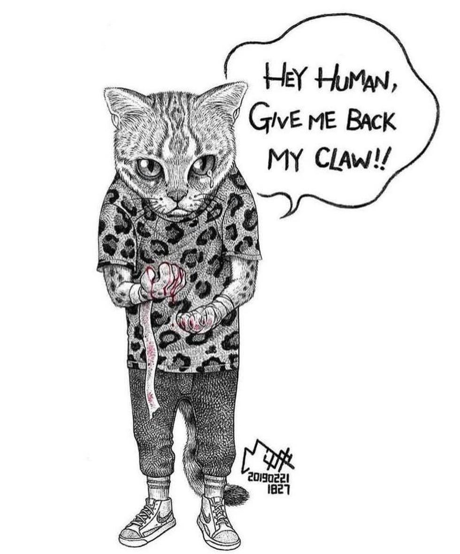 Bộ tranh gây sốc: Động vật sẽ nói gì nếu trò chuyện với con người? - Ảnh 10.