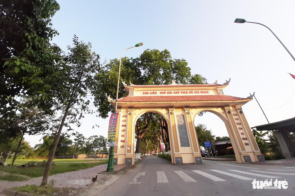Hàng cây xà cừ hơn nửa thế kỷ trên quê hương Bác Hồ - Ảnh 2.