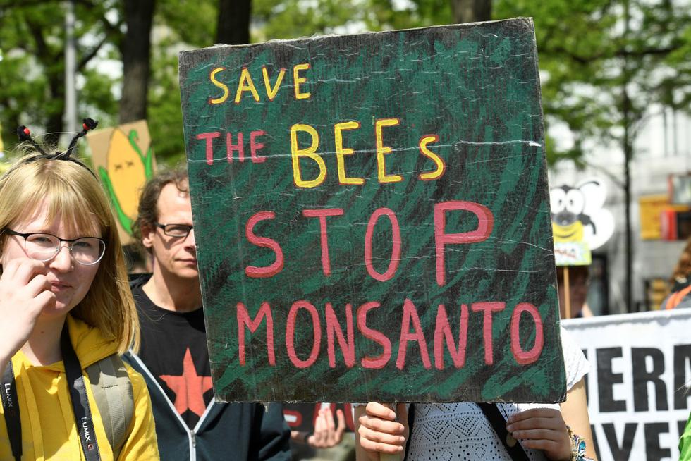 Thế giới tuần hành nói không với thuốc trừ sâu - Ảnh 4.