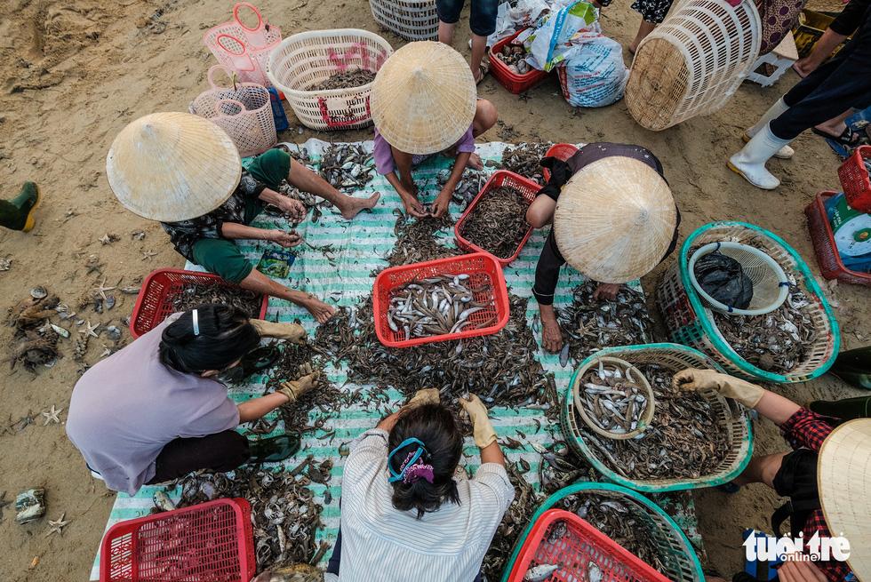 Chợ cá họp trước bình minh nơi làng chài Cửa Nhượng - Ảnh 8.