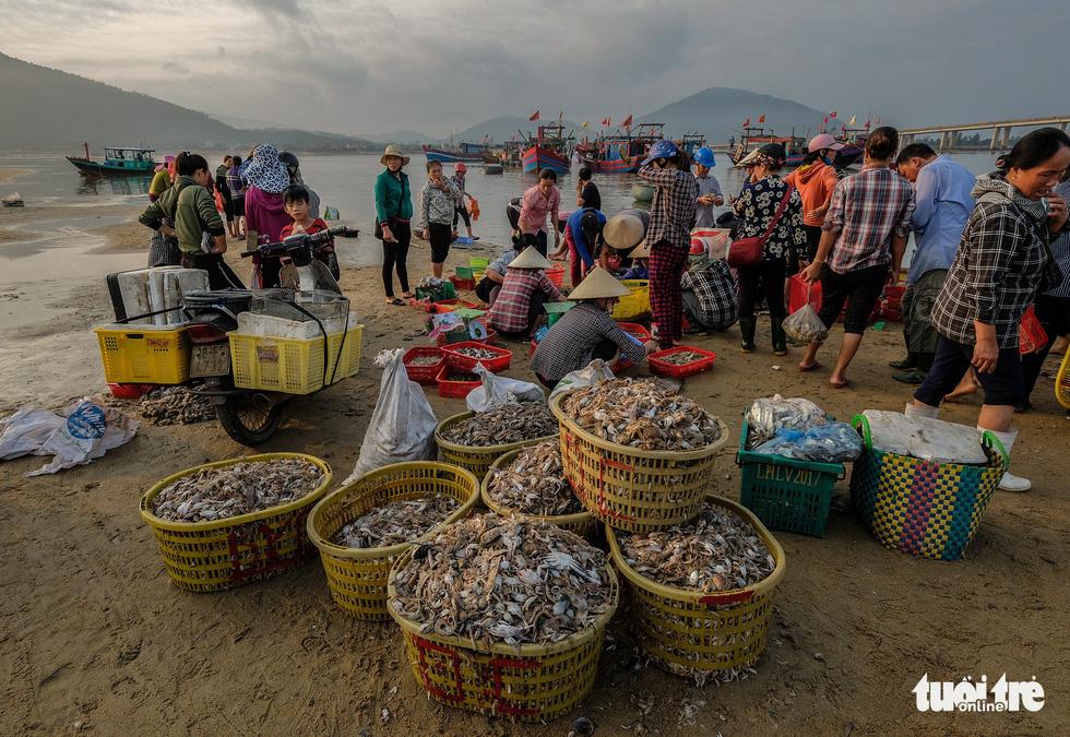 Chợ cá họp trước bình minh nơi làng chài Cửa Nhượng - Ảnh 6.