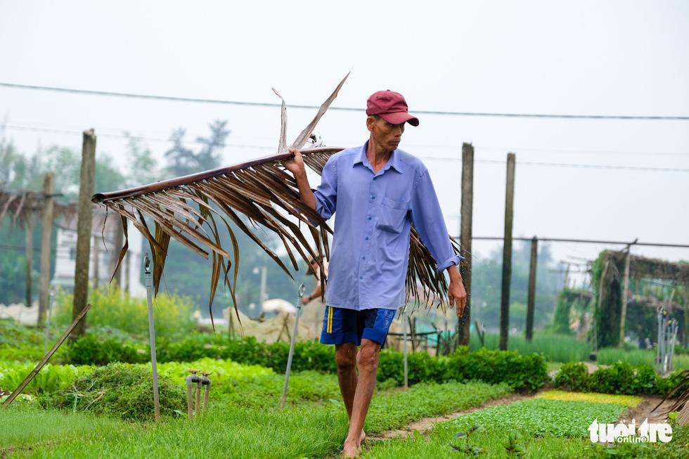 Đứng giữa làng rau Trà Quế, thấy cuộc đời luôn là sớm mai - Ảnh 5.