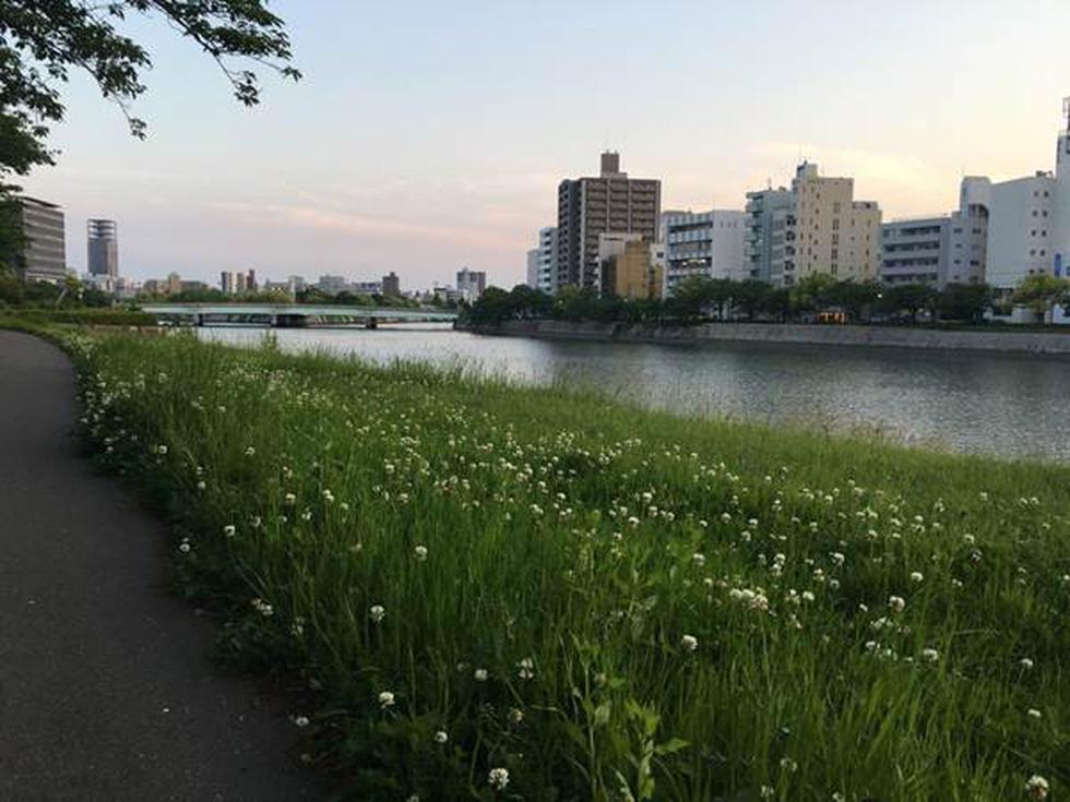 Đến Hiroshima, nơi ngân nga điệu hòa bình - Ảnh 1.