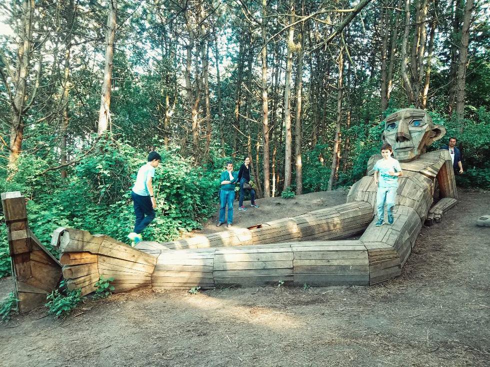 Đi tìm những người khổng lồ giữa rừng - Ảnh 6.