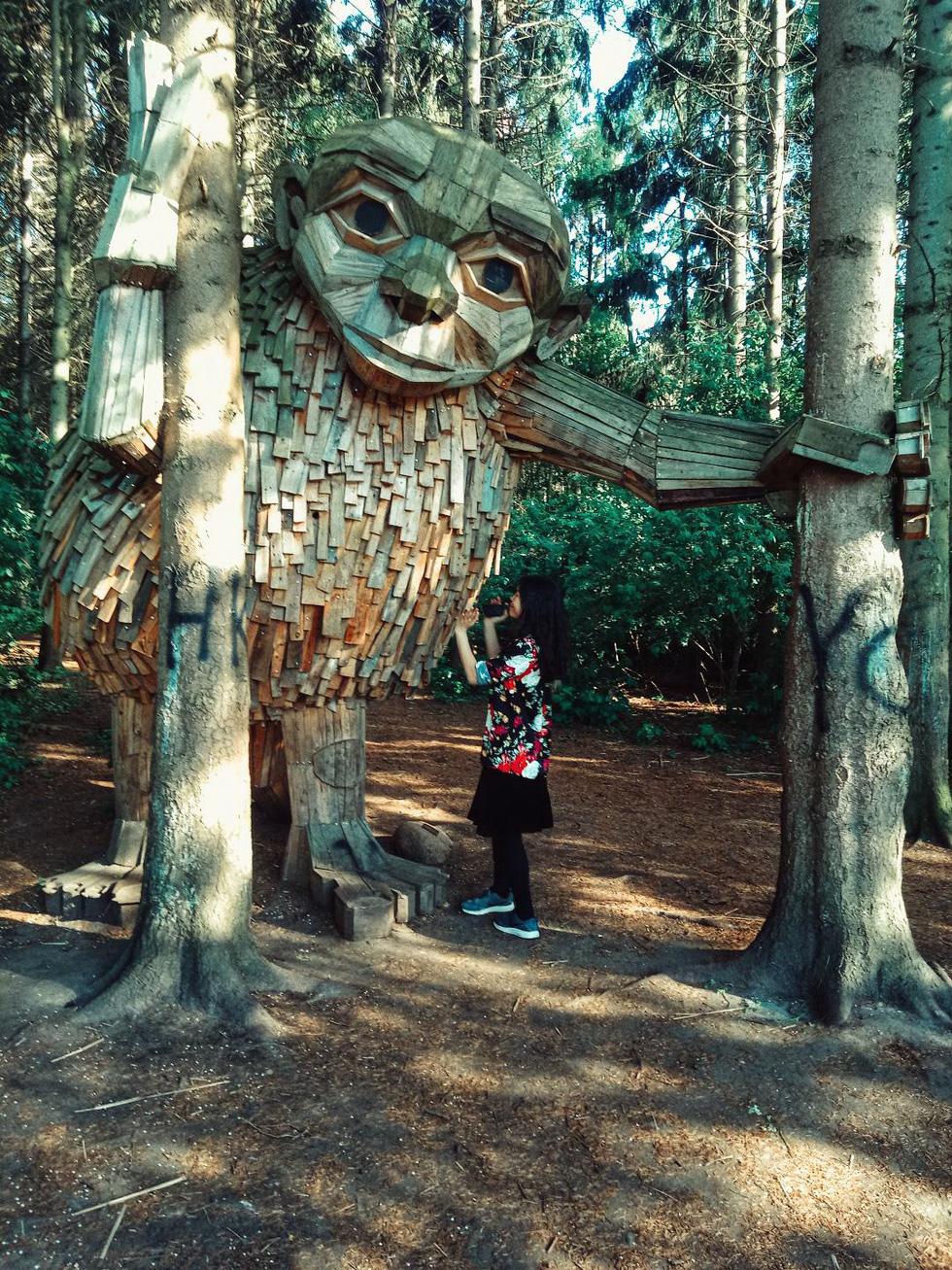 Đi tìm những người khổng lồ giữa rừng - Ảnh 4.