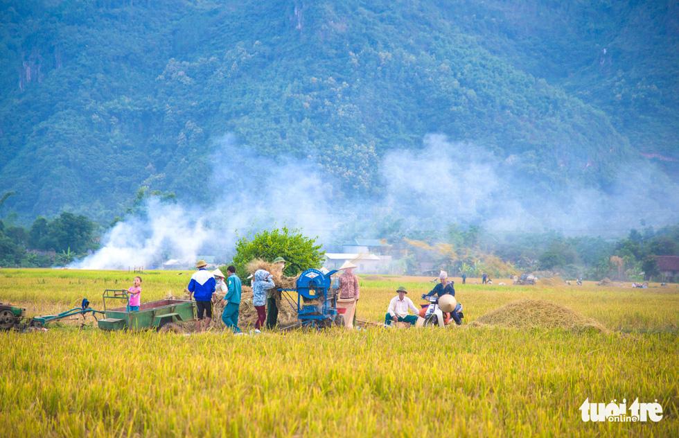 Mùa lúa vàng trên cánh đồng Mường Tấc vùng Tây Bắc - Ảnh 5.