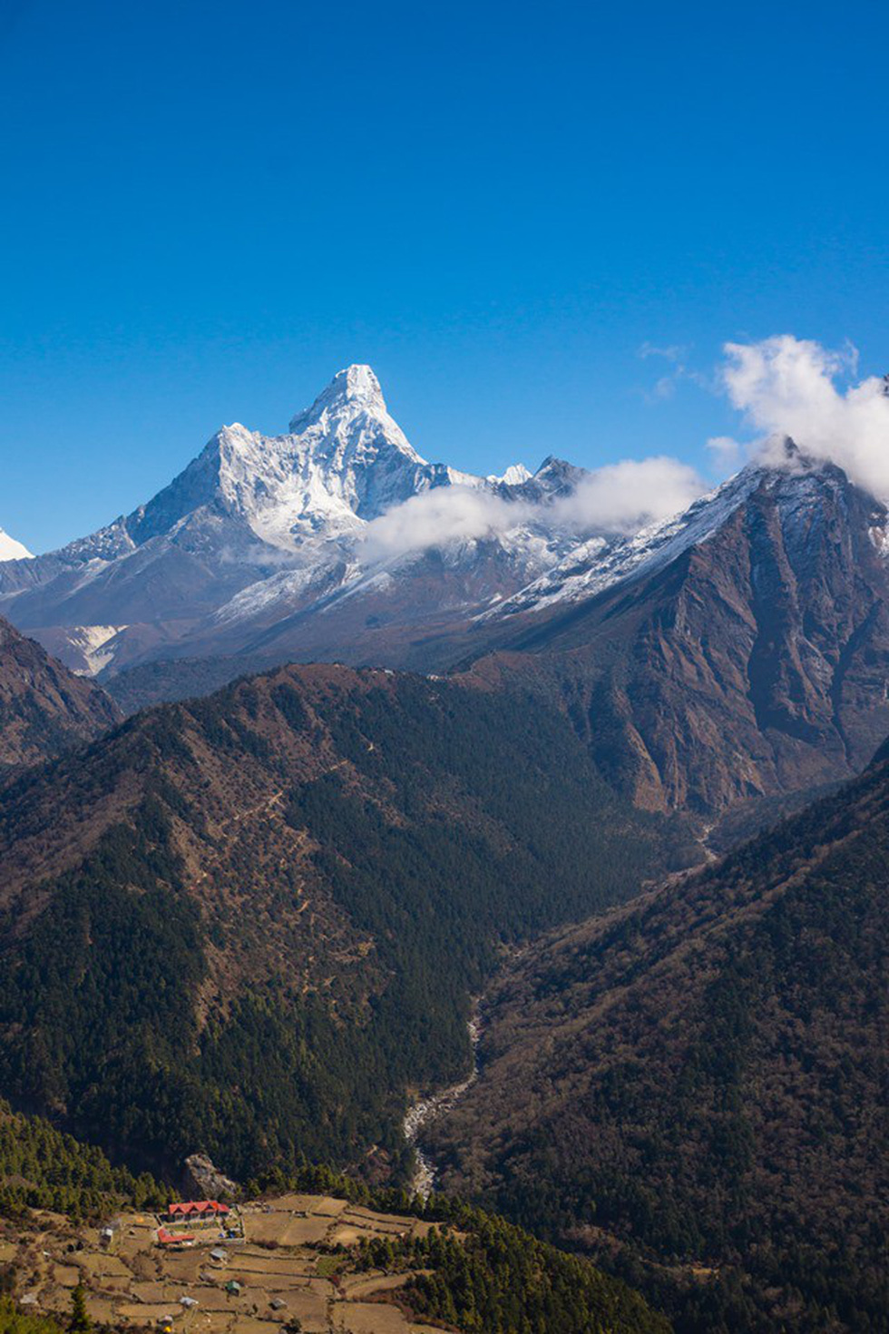 Giữ sức khỏe, chống say độ cao khi leo núi, trek đường dài  - Ảnh 6.