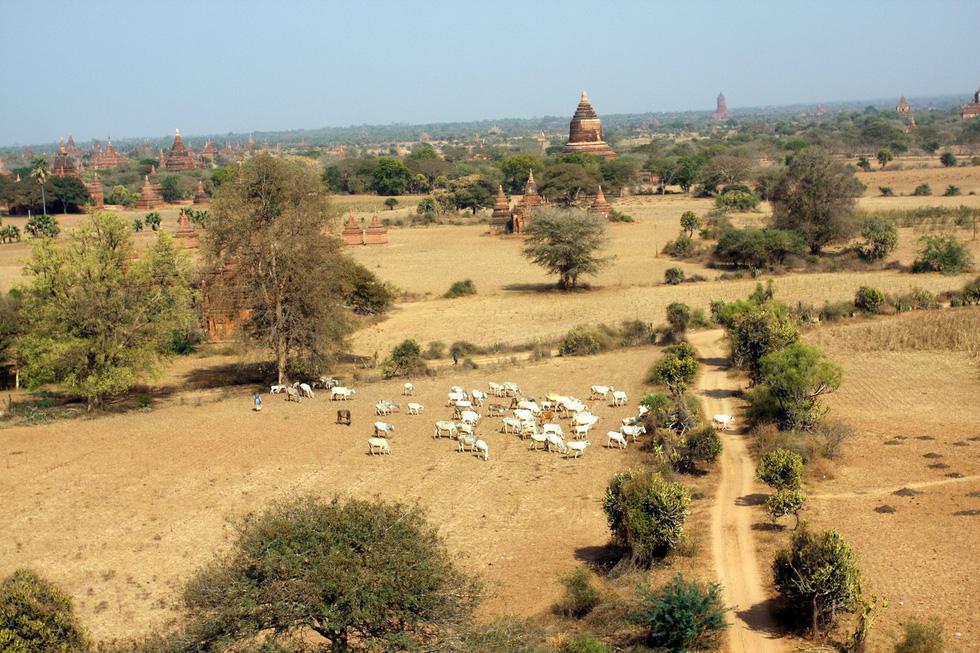 Những ngôi đền ngạo nghễ với thời gian ở cố đô Bagan - Ảnh 4.