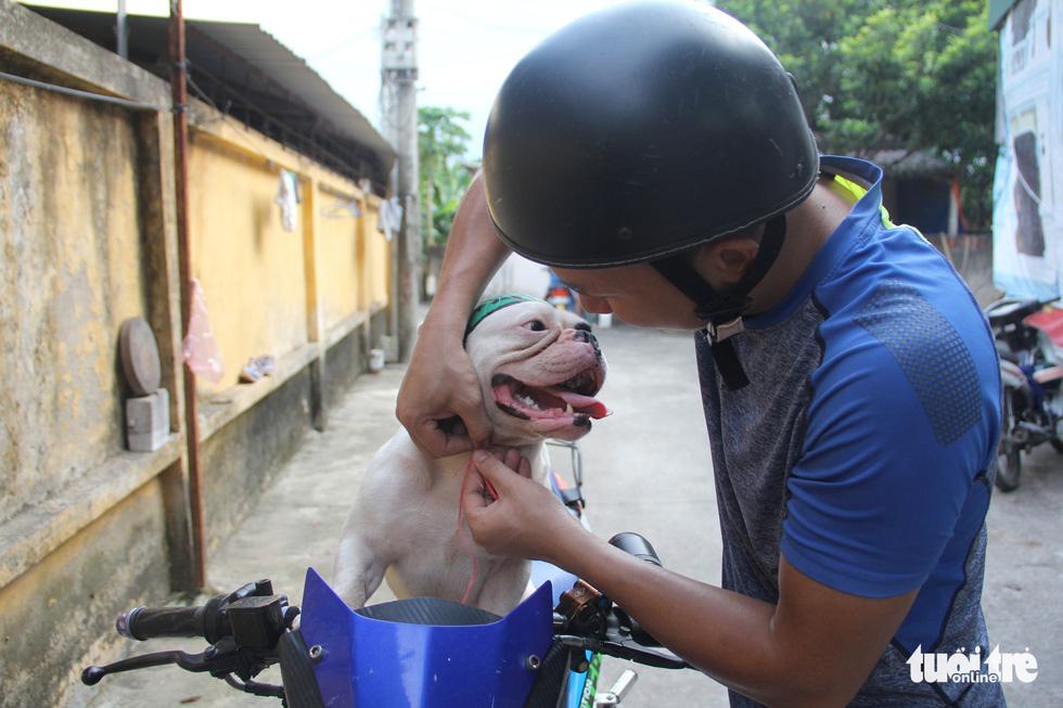 Vựa ve chai của chú chó đáng yêu tại Hà Nội - Ảnh 7.