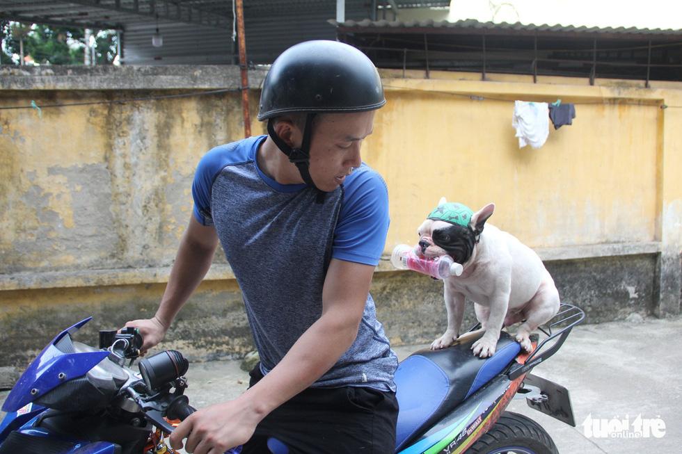 Vựa ve chai của chú chó đáng yêu tại Hà Nội - Ảnh 8.