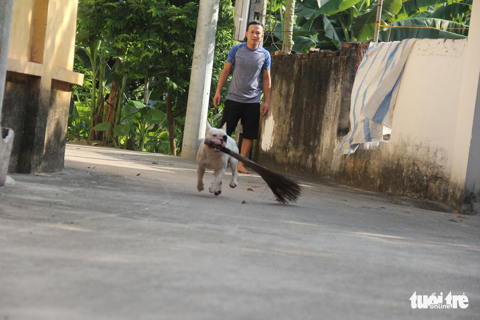 Vựa ve chai của chú chó đáng yêu tại Hà Nội - Ảnh 2.