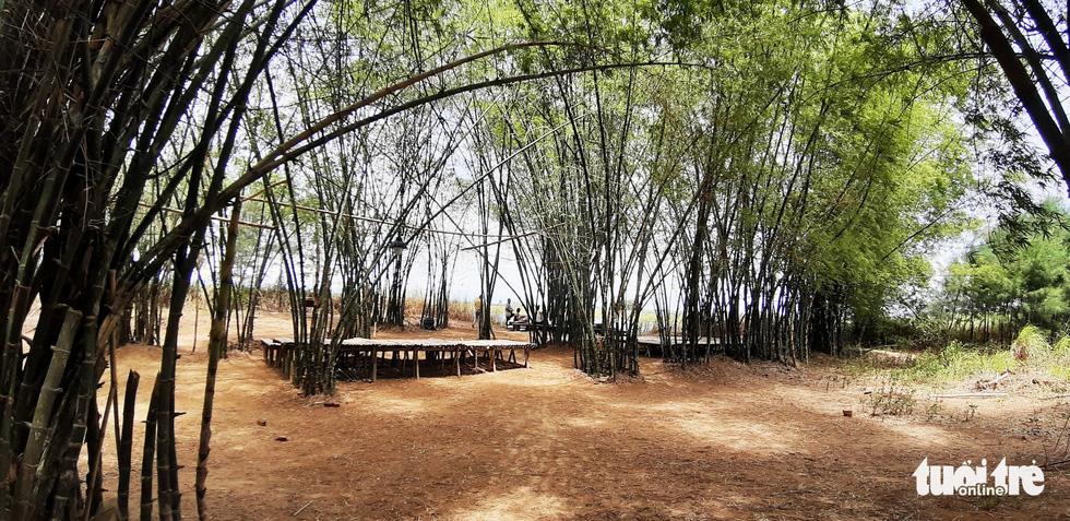 Làng tre Triêm Tây mát rượi bên sông, cách Hội An chỉ 2km - Ảnh 1.