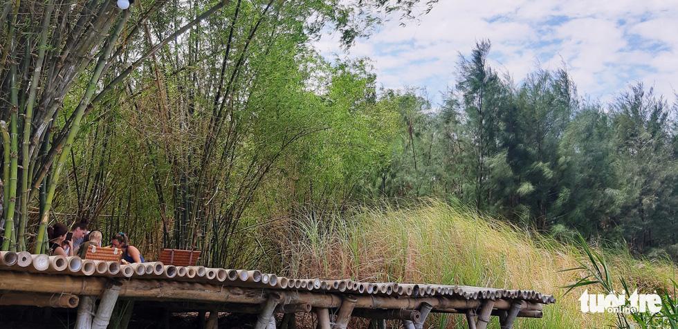 Làng tre Triêm Tây mát rượi bên sông, cách Hội An chỉ 2km - Ảnh 7.