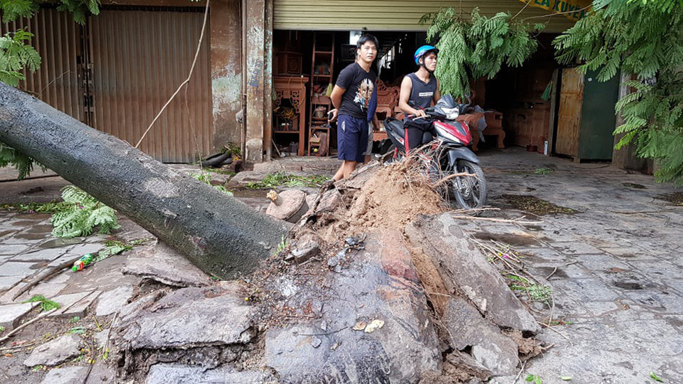 Bão đã đổ bộ gây sụt lở đường, khiến 2 người chết ở Thanh Hóa - Ảnh 7.