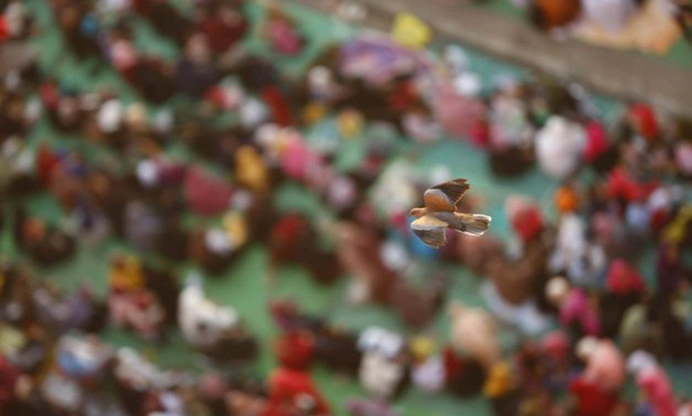 Hàng triệu người Ai Cập làm lễ Hiến sinh - Ảnh 4.