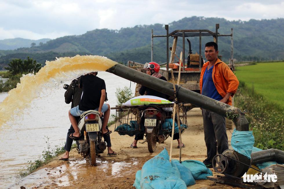 Cả làng đắp đê suốt 3 ngày đêm, cứu hơn 1.000ha lúa sắp thu hoạch - Ảnh 20.