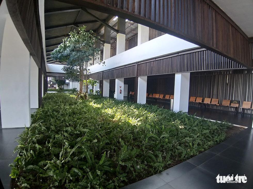 Khu rừng kỳ ảo ở miền Bình minh Java - Ảnh 16.