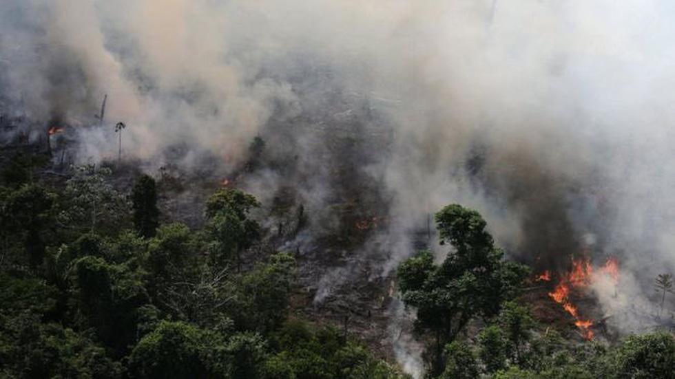 Cháy rừng Amazon: Nguyên thủ, diễn viên, ca sĩ cũng 'share' nhầm ảnh - Ảnh 2.