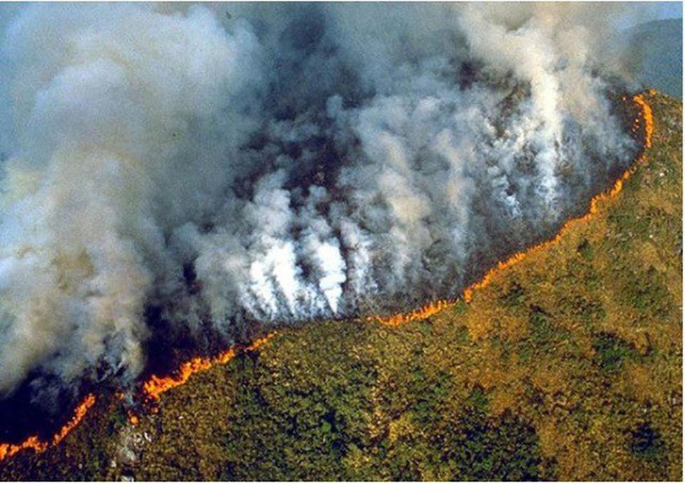 Cháy rừng Amazon: Nguyên thủ, diễn viên, ca sĩ cũng 'share' nhầm ảnh - Ảnh 3.