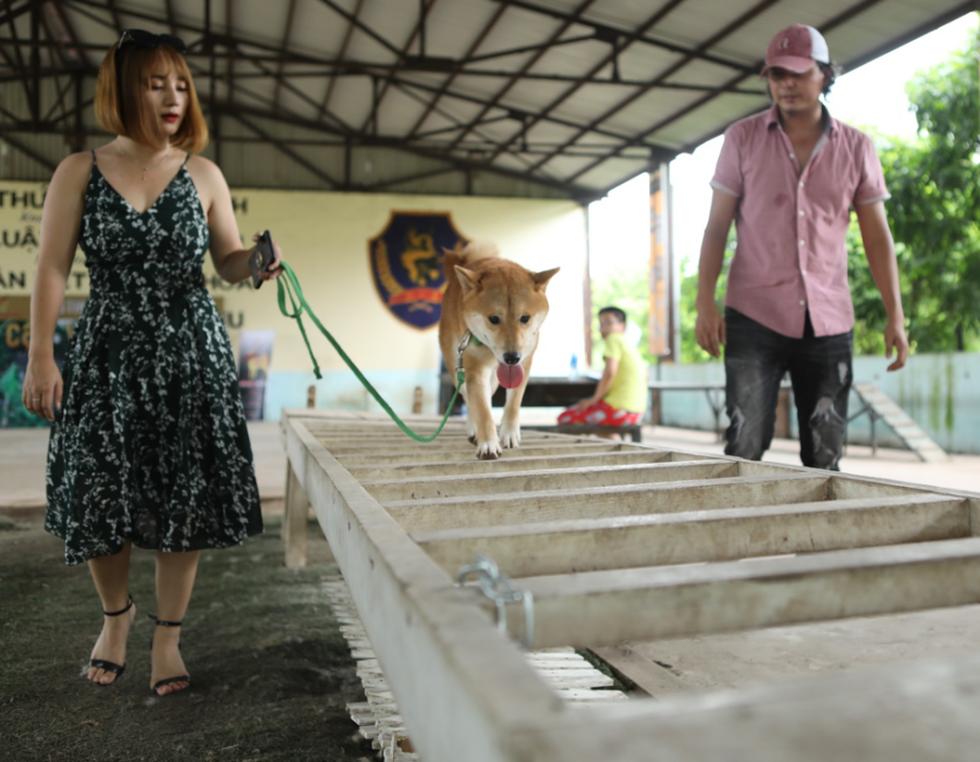 Cậu Vàng của Nam Cao: Phim Việt đầu tiên vai chính là một chú chó - Ảnh 2.
